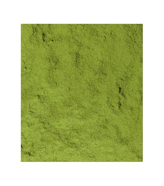 Té verde organico japonés Matcha Ujicha