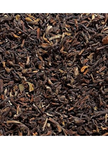 Golden Nepal | Tea Sinensis