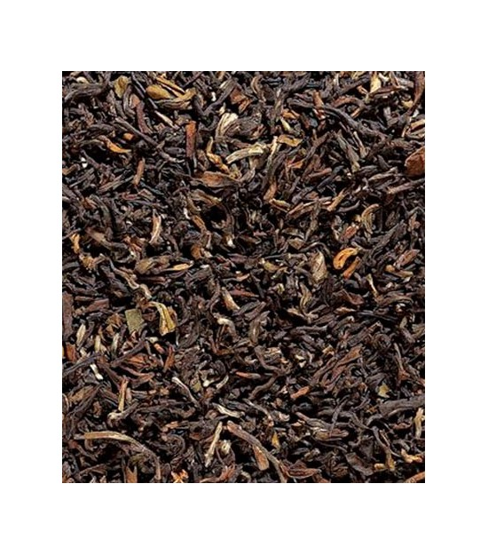 Golden Nepal | Tea Sinensis