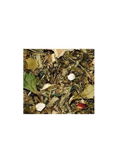 Té blanco y té verde manzana ginger